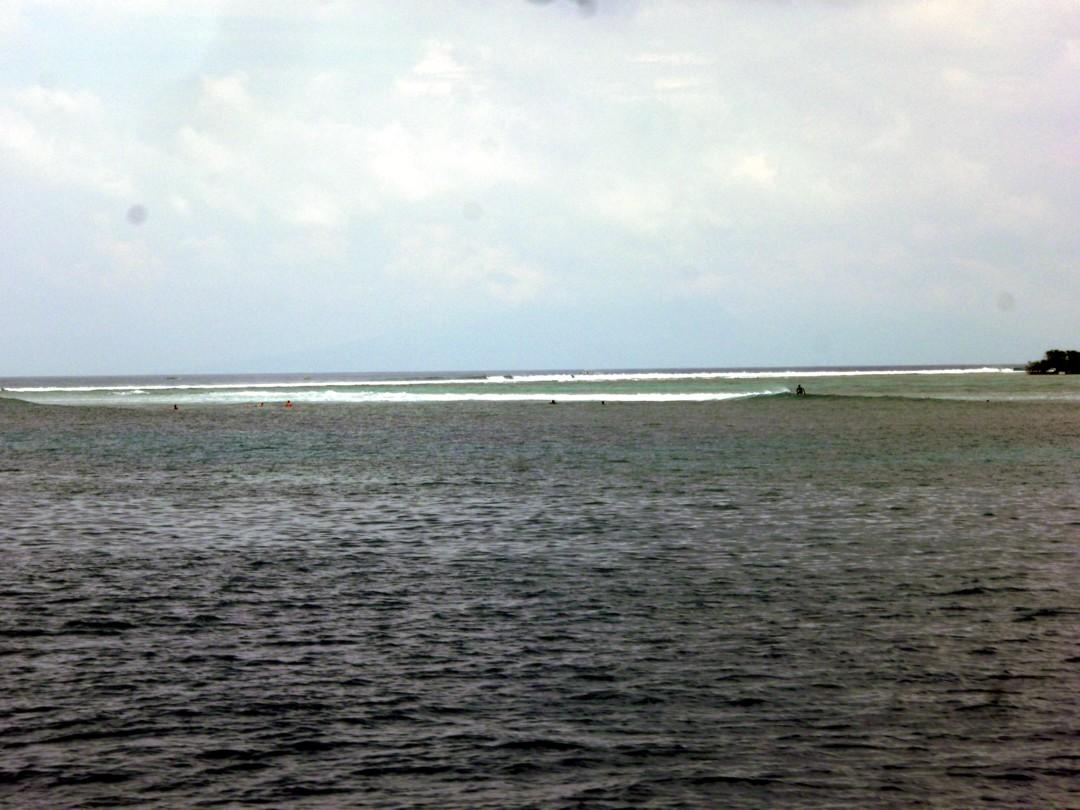 surffimestoja